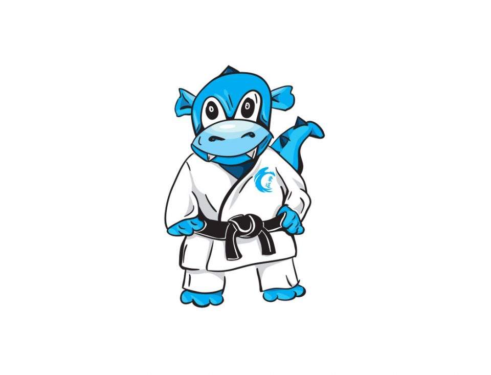 UKS Judo Kraków szuka trenera judo